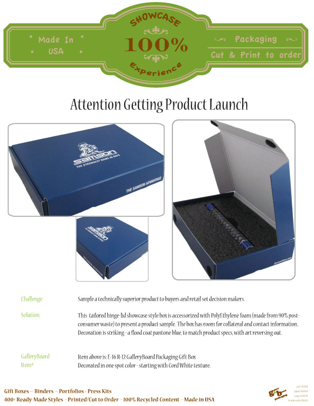 Experience_ShowcasePackaging_Flyer_Attention-Getting-Product-Launch